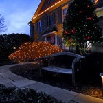 Holiday Landscape Lighting