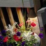 Outdoor lighting over plants